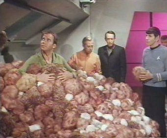 [Image: tribble3.jpg]